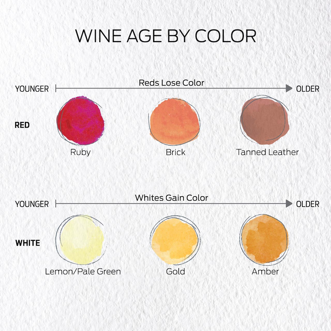 Wine Age by Color