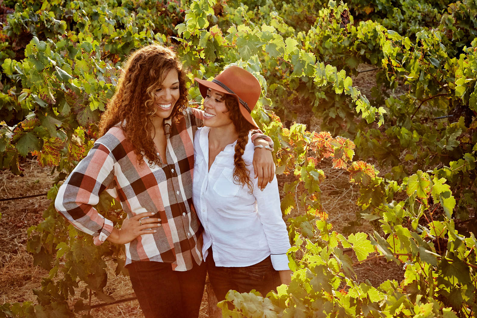 McBride Sisters in their vineyard McBride Sisters Collection